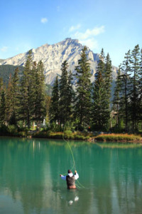 Fly-fishing on the Bow River.