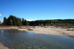 Once a beloved day use area, Allen Bill Pond was destroyed by flooding in 2013 and the Elbow River has now reverted to its original course.