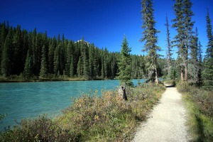 Bow River Loop