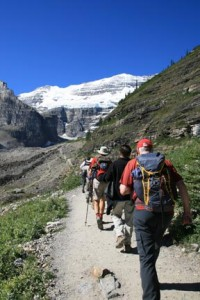 Plain of the Six Glaciers Hiking Trail