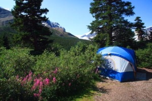 Columbia Icefield Campground