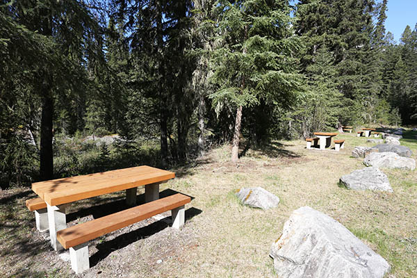 The new picnic tables at Wardle Creek Day Use Area.