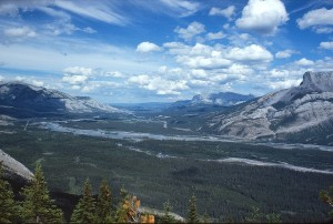 Looking over the Athabasca Valley from Devona Lookout—one of the popular June trips for hikers and cyclists from Jasper's Celestine Road.